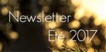 Été 2017 : quoi de neuf ?
