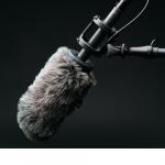Les 2 plus grands IXP en France fusionnent – Interview